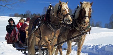 05-pferdeschlitten-1